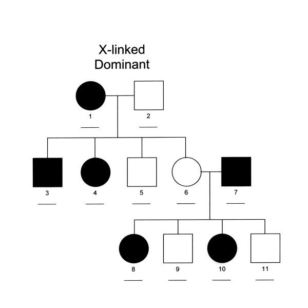 A Guide to the Use of Pedigree Analysis in the Study of