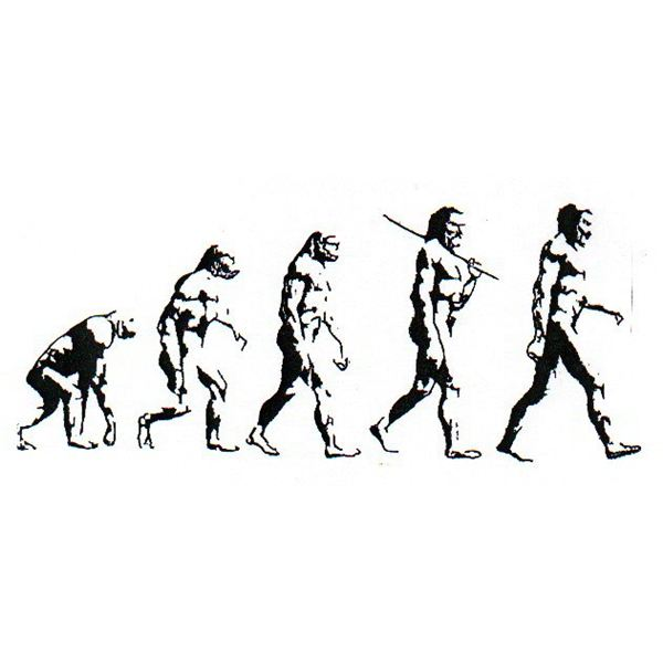 Human Evolution Time Line: The Study of Man