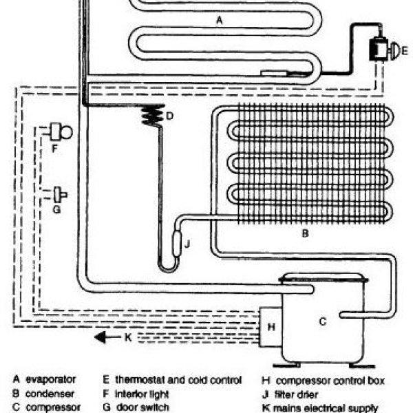 fridge interior parts