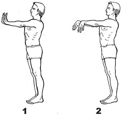 Brain Gym Technique: Cognition, Focus and Coordination