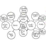Interactive Activity Ideas For Comparing and Contrasting