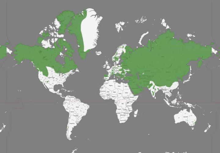 mapa de la vida