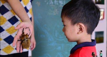 【宜蘭雨天備案景點】甲蟲森林生態教室,讓孩子大叫媽媽驚聲尖叫的蟲蟲教室/親子景點