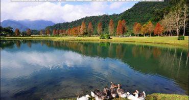 宜蘭最美落羽松秘境   員山蜊埤湖福園.IG打卡夢幻景點、宜蘭版雲山水在這裡