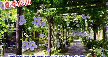 【宜蘭員山咖啡廳】鄧伯花廊咖啡 紫色花海隧道夏日盛開、品嚐下午茶賞花最浪漫