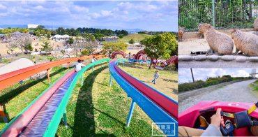 九州福岡必去|海之中道海濱公園,親子特色溜滑梯公園、春日賞櫻花粉蝶花好去處