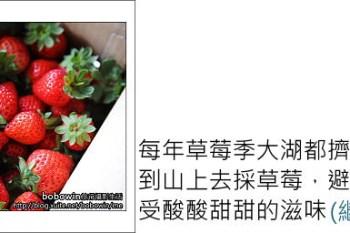 [ 苗栗 ] 不必塞車的草莓園~山下一品