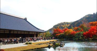 [ 關西京都自由行 ] Day2 part2  嵐山天龍寺-->竹林小徑--> 野宮神社