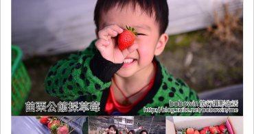 [ 苗栗草莓季 ] 公館採草莓~避開大湖塞車人潮