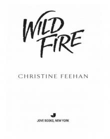 Christine Feehan » Page 2 » Read and Listen Online Free Book