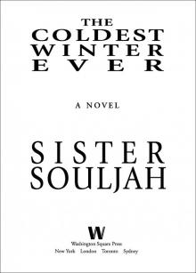 The Coldest Winter Ever (Sister Souljah) » Page 11 » Read