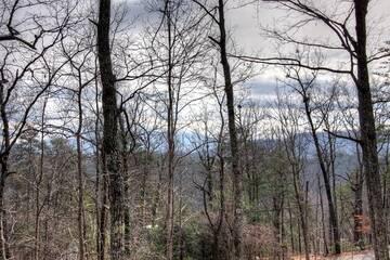Taken at Secluded Memories in Sugar Mountain TN