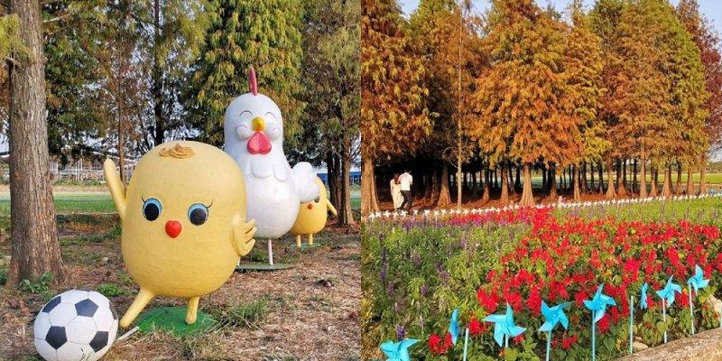 六甲菁埔埤落羽松|搭配向日葵風車、蛋蛋雞樂園絕美秘境美景超好拍