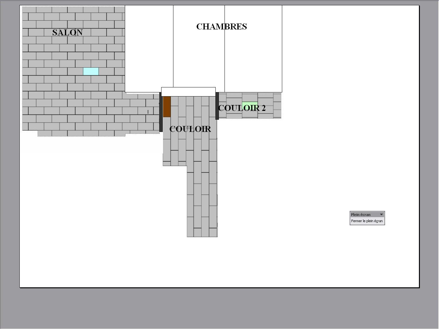 Sens Pose Parquet Couloir