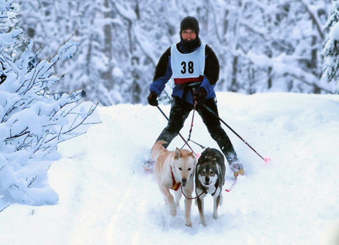 5 Best Places For Winter Sports Budget Travel