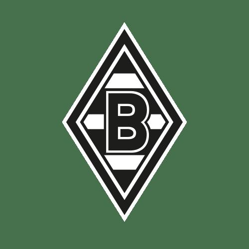 BMG 1 - The Ultimate Bundesliga Fan Guide! Pick a new favorite team!