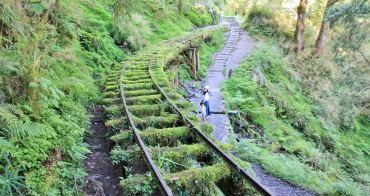 宜蘭景點   此生必遊!全球最美小路見晴懷古步道,絕美綠之森林鐵道~