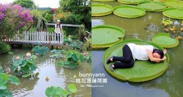 桃園景點》蓮荷園休閒農場,水上漂浮大王蓮,來當一日睡美人~