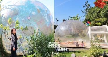 南投景點》埔里多肉秘境,夢幻泡泡屋、6米大藍色地球,一起逃離地表吧~