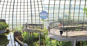 嘉義景點》新嘉大昆蟲館,走進浪漫蝴蝶森林裡,全台唯一的旋轉彩蝶柱在這!