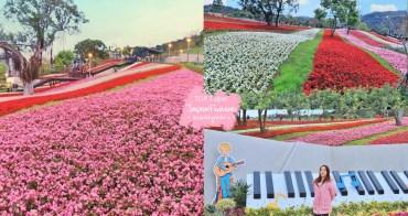 台北景點》最新小富良野花海!北投社三層崎公園私房賞花點,繽紛花毯鋪滿山丘~