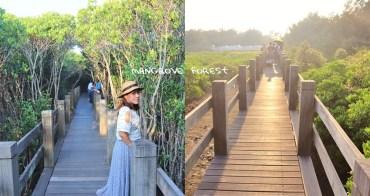 新竹景點》龍貓隧道!新豐紅樹林生態保護區,追逐濕地夕陽就來這~