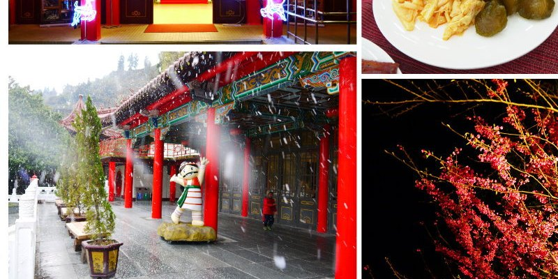 <中橫行> 梨山賓館,白雪與夜櫻篇(含早、晚餐及蔣公房展覽室)
