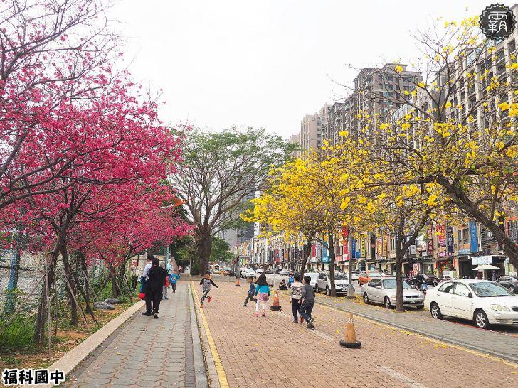 20180307230546 5 - 一次能捕捉到盛開的櫻花與黃花風鈴木耶~市區內賞花小確幸~