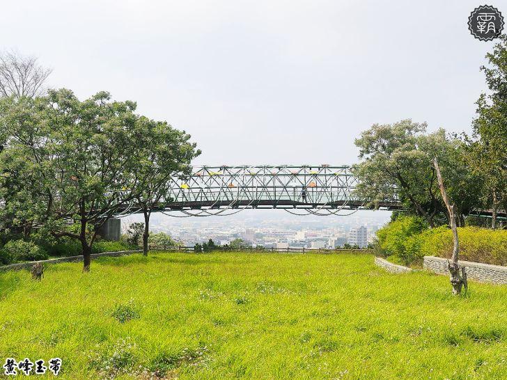 20180402220118 18 - 鰲峰玉帶,清水景觀橋賞苦楝花,旁邊還有大草皮可以野餐~