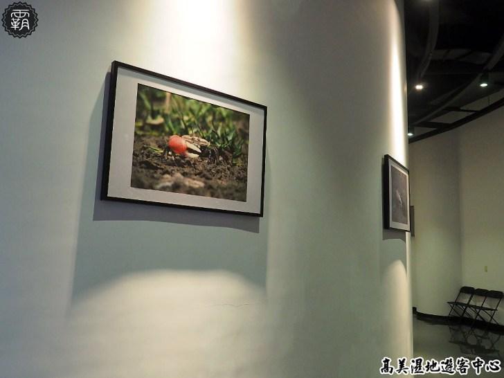 20180802115723 89 - 高美濕地遊客中心,外有招潮蟹裝飾藝術,內有互動體驗適合親子出遊!