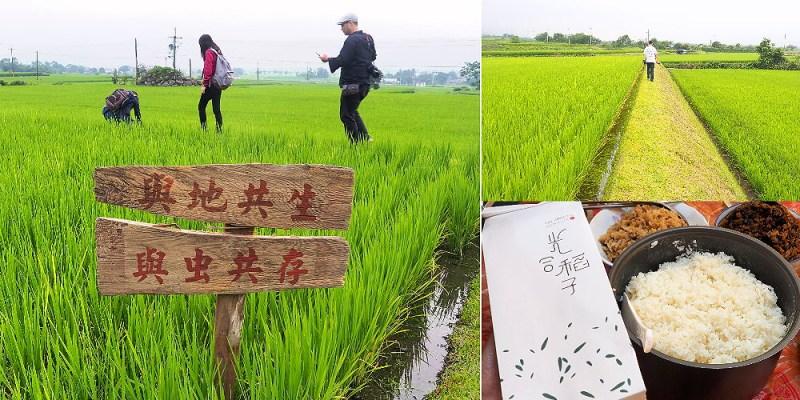 <花蓮玉里> 光合稻子,聿犁聯邦農業與花蓮在地小農一同推廣優質玉里米,米飯的食味值一極棒!