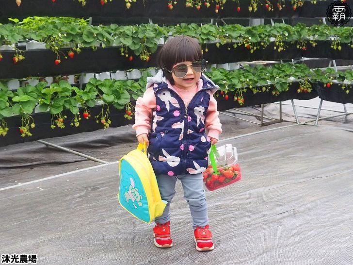 20190405214554 21 - 白草莓、水蜜桃草莓好特別!沐光農場,溫室高架草莓園,採草莓超舒適!