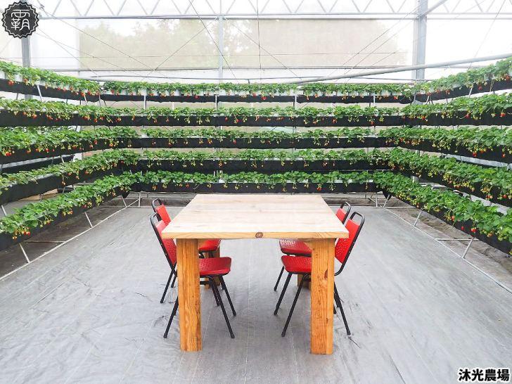 20190405214555 44 - 白草莓、水蜜桃草莓好特別!沐光農場,溫室高架草莓園,採草莓超舒適!