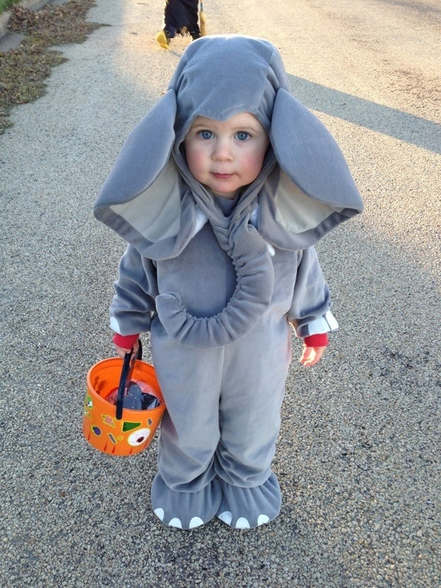 Feel free to accessorize wit. 26 Halloween Costumes For Toddlers That Are Just Too Cute To Believe
