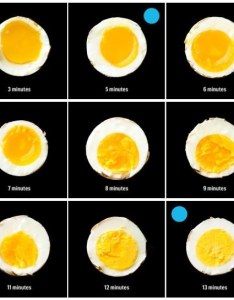 diagrams that make cooking so much easier also ways to fry eggs chart zoroeostories rh