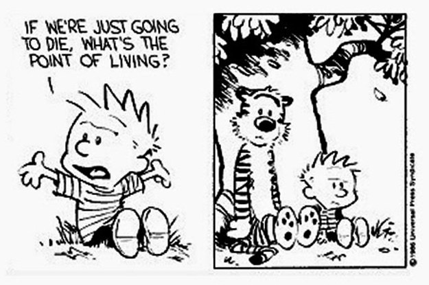 What Do You Think Is The Meaning Of Life?