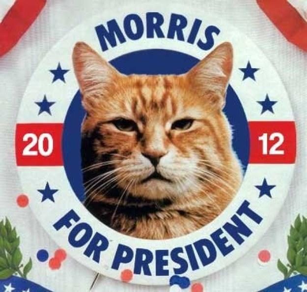 Presidential candidate Morris.