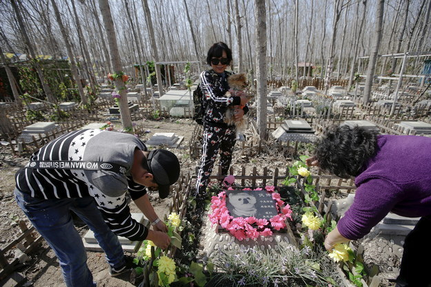 """In China, spring is a time to think about the past. During Qingming, commonly known as """"Tomb-Sweeping Day,"""" millions of Chinese people visit cemeteries to pay tribute to their deceased family members — which in recent years has extended to pets."""