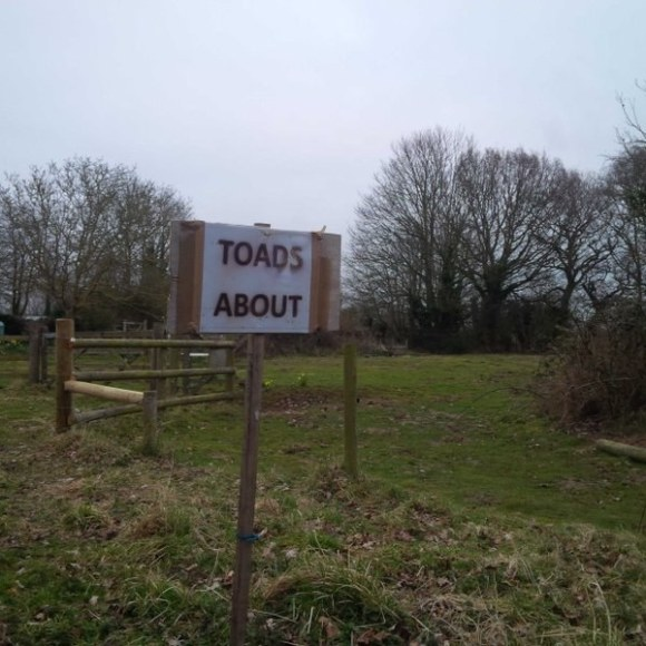 Danger warnings in the UK:
