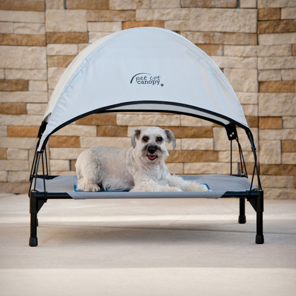 This outdoor pet canopy bed that you'll be dying to fit onto when it gets too hot in the sun.