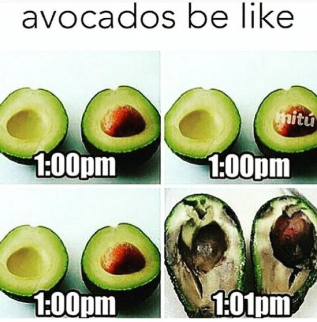 Avocados last one minute: