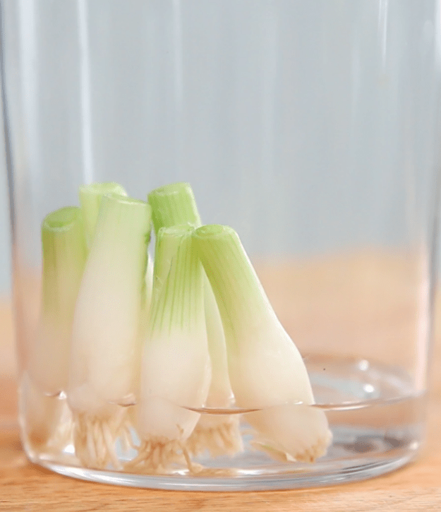 Instructions for the green onion: