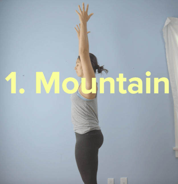 Next, inhale and raise your hands towards the ceiling for mountain pose.