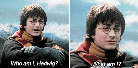 '-- Quem sou eu, Edwiges? Quem sou eu?'