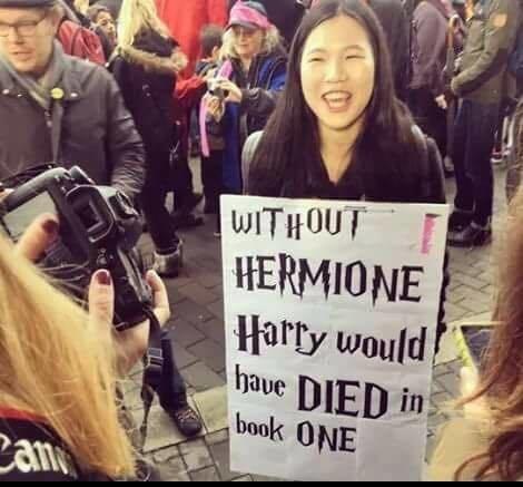 O cartaz diz 'sem a Hermione o Harry teria morrido no primeiro livro'.