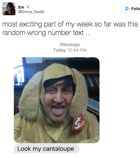 This person who got a text from a Beanie Baby slash melon:
