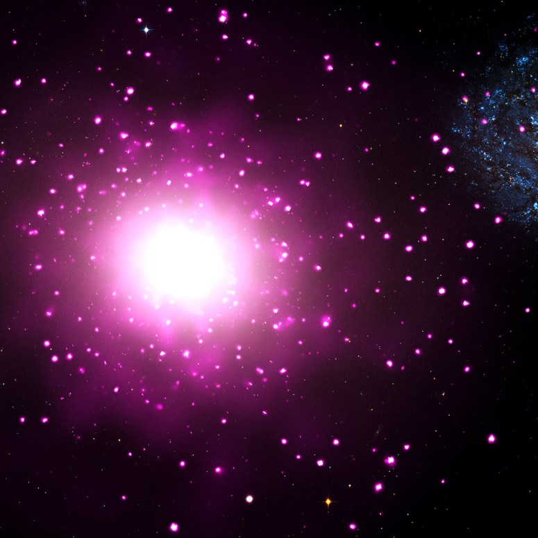 M60-UCD1 is located near the massive elliptical galaxy NGC 4649, also called M60, about 54 million light-years from Earth. This composite image shows M60 and the region around it, where data from NASA's Chandra X-ray Observatory are pink and data from NASA's Hubble Space Telescope are red, green, and blue. The Chandra image shows hot gas and double stars containing black holes and neutron stars, and the Hubble image reveals stars in M60 and neighboring galaxies including M60-UCD1.