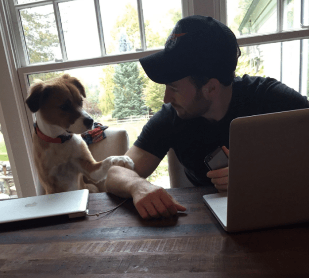 Chris Evans & Dodger: