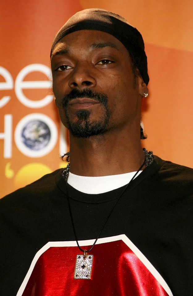 Snoop Dogg was there, and he wouldn't even start going by Snoop Lion for another five years.