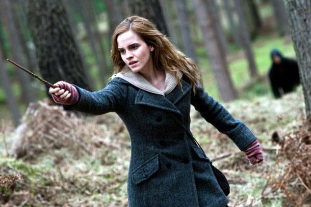 Ela é sabichona, sim, mas se não fosse por ela aqueles dois tontos do Ron e o Harry não teriam sobrevivido nem ao primeiro livro.